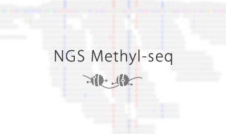 NGS Methyl-seq