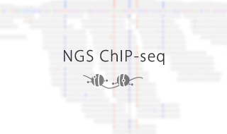NGS ChIP-seq