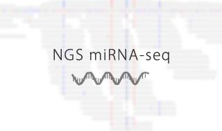 NGS miRNA-seq