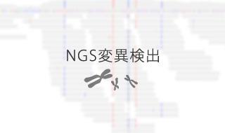 NGS変異検出