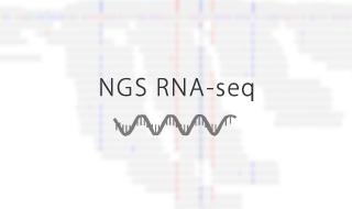 NGS RNA-seq