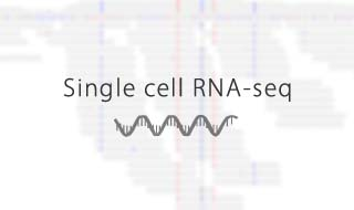single cell rna-seq