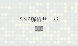 SNP解析サーバ