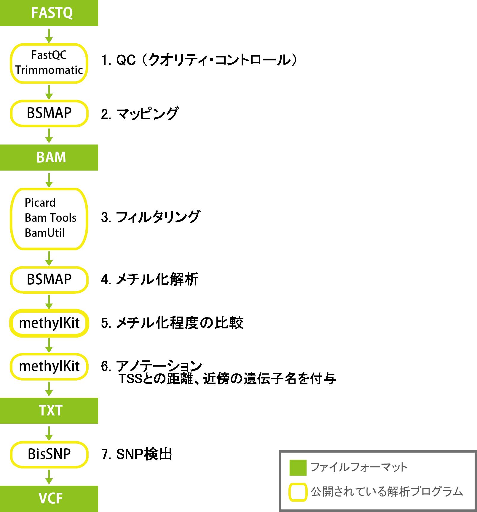 1.PolyA/T tailを除去、2.クオリティコントロール、3.マッピングおよびスプライスジャンクションを検出、4.遺伝子構造を予測/新規の転写産物を推定/FPKMを算出、5.グループ間比較、6.融合遺伝子探索